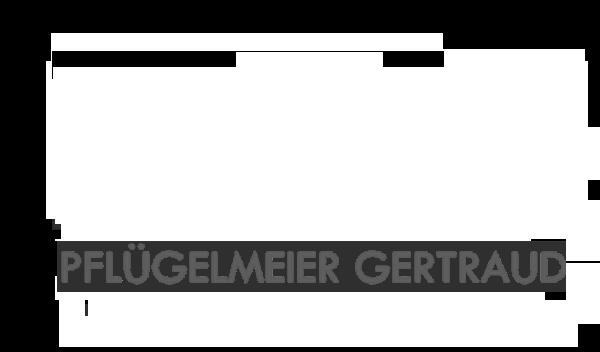 Praxis für Psychotherapie Pflügelmeier Gertraud